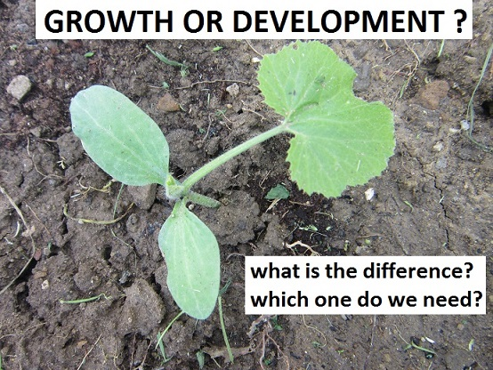 growth-vs-development