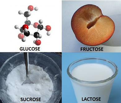 types-of-sugar